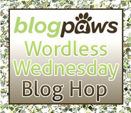 Blog Paws Blog Hop
