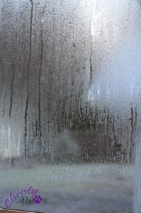 Fogged window