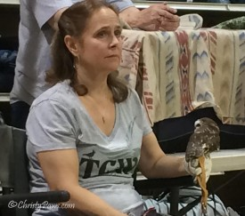 Susan Manning, TCWC Director of Animal Care, with saw whet owl, Brutus