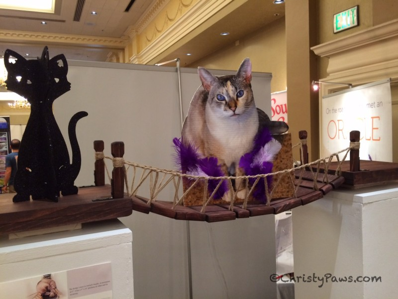 Flat Christy on the CatastrophiCreations.com Indiana Jones Cat Bridge