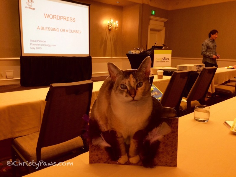 Flat Christy attending a session