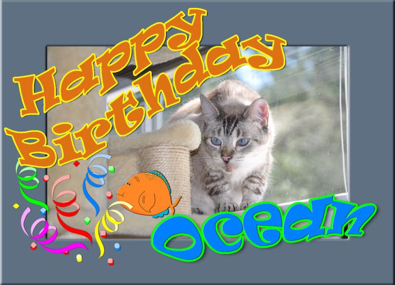 Happy Birthday, Ocean!