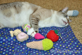15andmeowing toys 161_2222