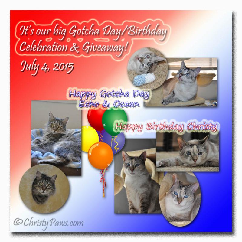Big Gotcha Day/Birthday Celebration & Giveaway!