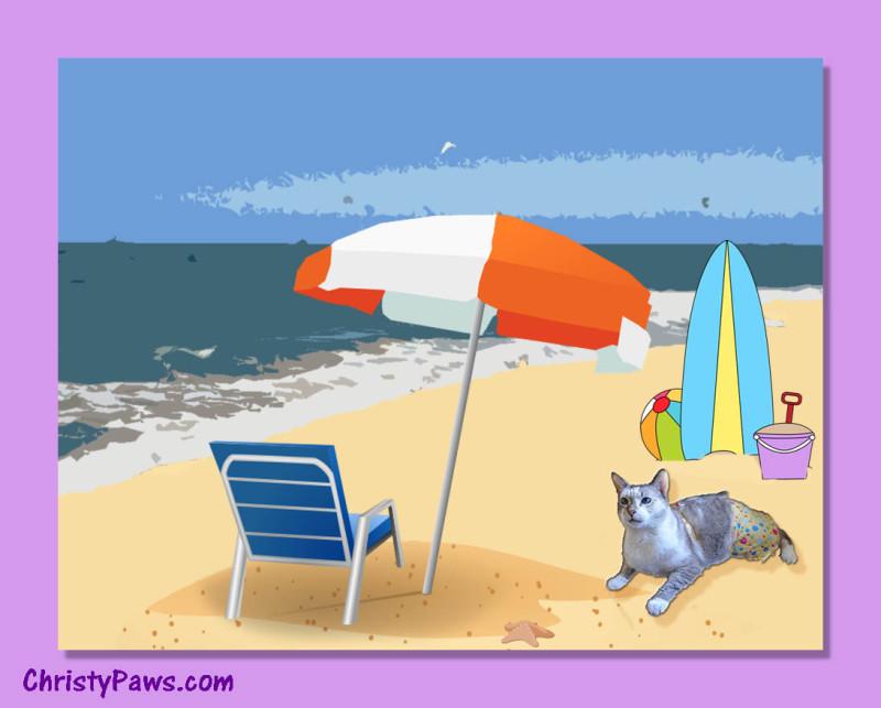 Bikini on the beach 2