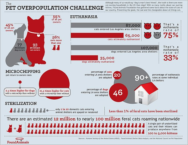Pet Overpopulation - Be the Change - Spay or Neuter - Spread the Word