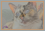 Caturday Art: Sketches and Glows