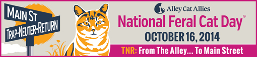 National Feral Cat Day banner