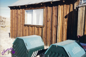 Composting - Even in the desert mom composted
