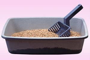 What's in Your Litter? Composing Cat Litter