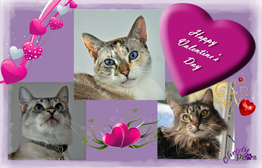 Caturday Art: Valentine Card 2015