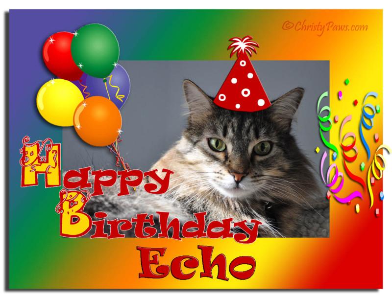 Sunday Selfies: Echo's Birthday