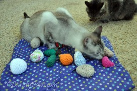 My Pawsome Prize from 15andmeowing - Crochet Cat Toys