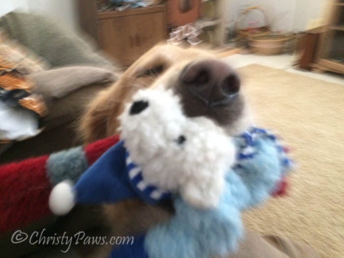 He did not want to be still when he had those toys in his mouth! He wanted to climb into mom's lap!