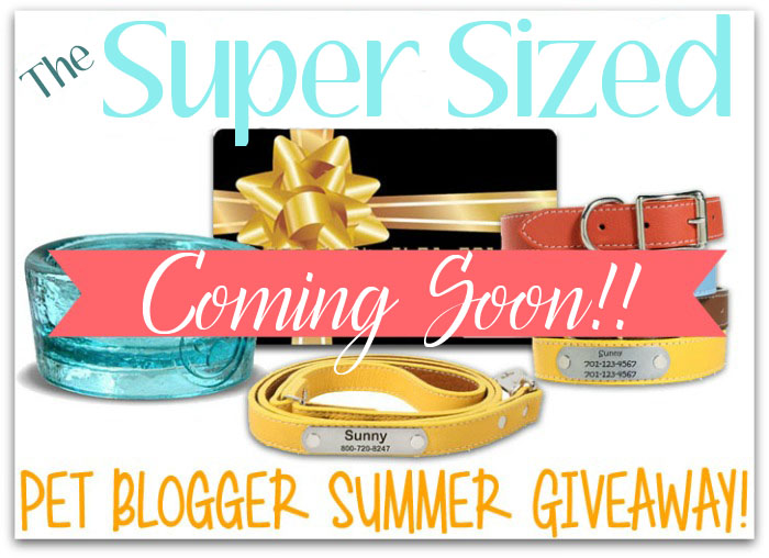 Coming Soon-Pet Blogger Giveaway