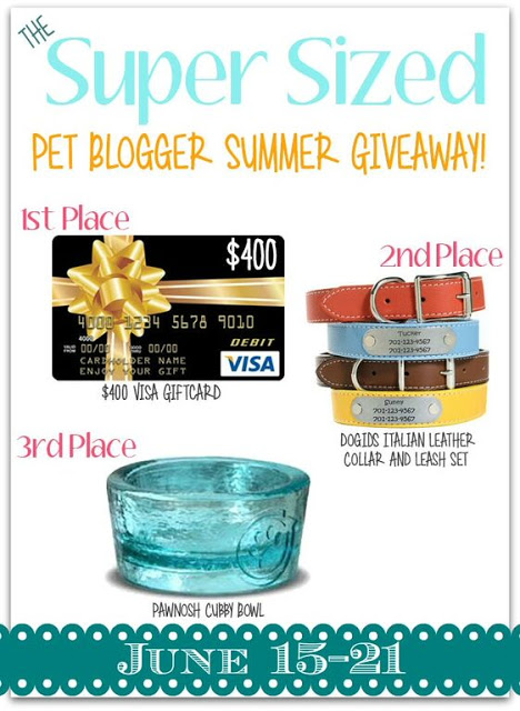It's The Super Sized Pet Blogger Summer Giveaway!