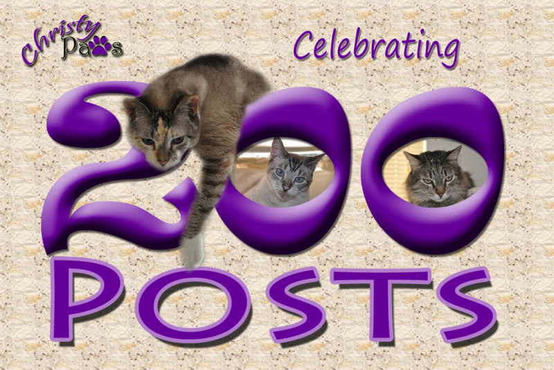 Caturday Art: 200 Posts!