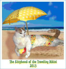 Phoebe's Traveling Bikini Badge