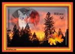 Caturday Art: Flaming Colors of Fall