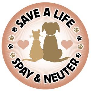 spay-and-neuter