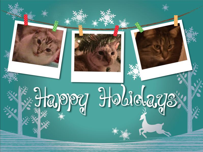 Caturday Art: Artful Holiday Cards