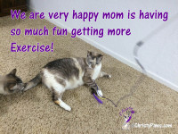 How we help mom get more exercise