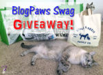 BlogPaws Swag Giveaway and Celebration