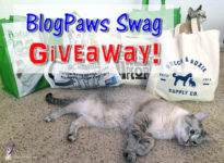 Happy Independence Day! Today is also our big birthday/gotcha day celebration. We're having a BlogPaws swag GIVEAWAY! Come enter for a chance to win.