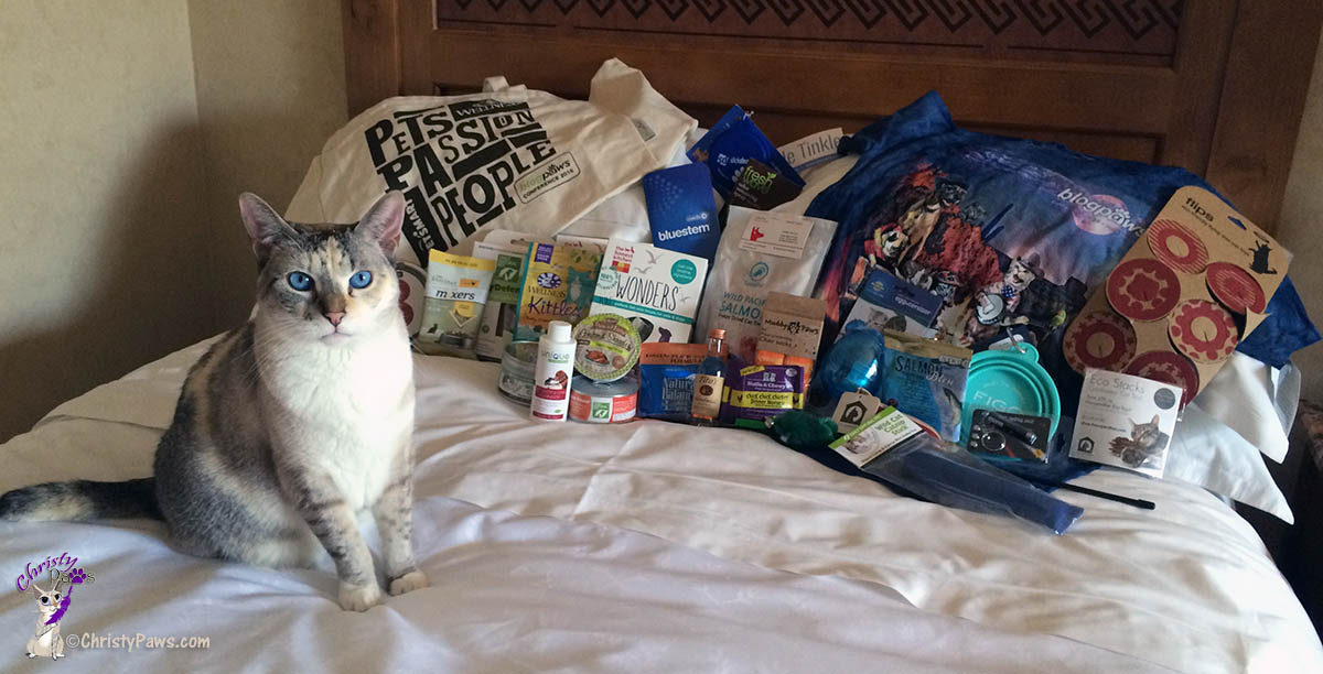 Road Trip - Part 2 - BlogPaws