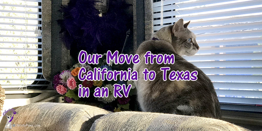 A Recap of our Move from California to Texas