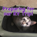 Preparing for our RV Trip -- What We Cats Need to Do