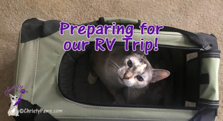 cat in carrier with text overlay: Preparing for our RV Trip